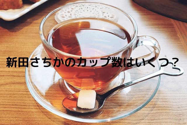 新田さちか カップ数