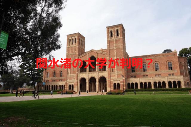 関水渚 大学